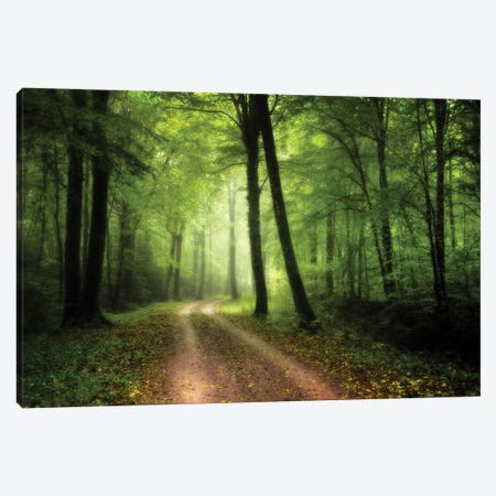 A Walk In The Fresh Green Forest Canvas Print #PHM3} by Philippe Manguin Art Print