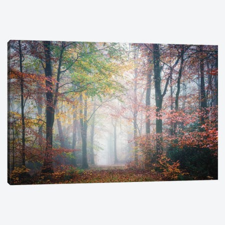 Colored Forest Canvas Print #PHM409} by Philippe Manguin Canvas Art