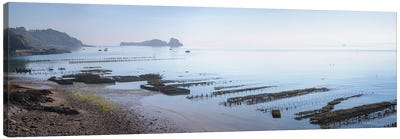 Cancale Oyster Parks Canvas Art Print