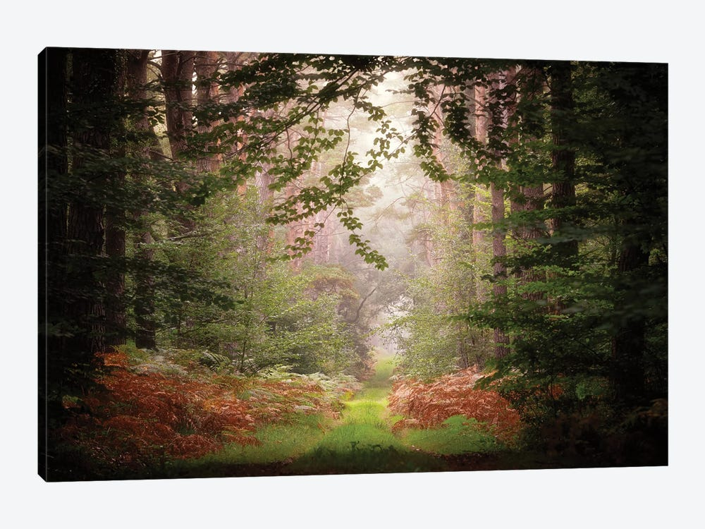 After The Rain by Philippe Manguin 1-piece Canvas Art