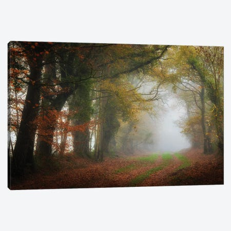The Foggy Day Canvas Print #PHM481} by Philippe Manguin Canvas Art
