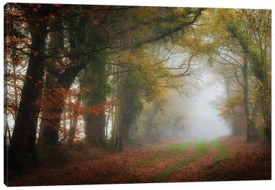 The Foggy Day Canvas Art Print