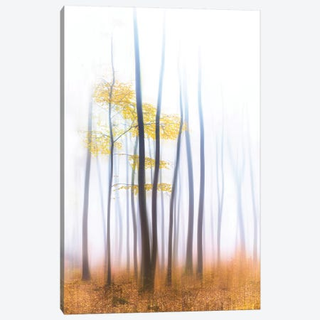 Evaporation Saisonniere Canvas Print #PHM72} by Philippe Manguin Canvas Wall Art