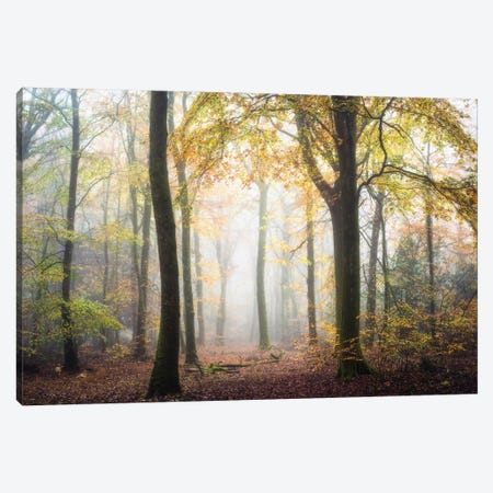 Fall Mood Canvas Print #PHM74} by Philippe Manguin Canvas Print