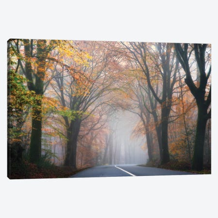 Forest Mood By The Road Canvas Print #PHM79} by Philippe Manguin Canvas Artwork