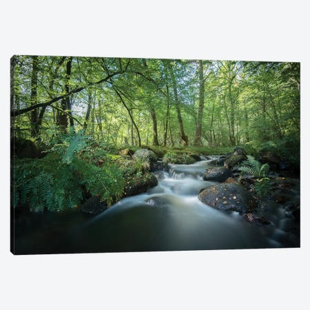Fresh River I Canvas Print #PHM87} by Philippe Manguin Canvas Artwork