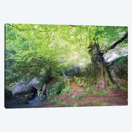 Huelgoat Entrance Canvas Print #PHM92} by Philippe Manguin Canvas Artwork