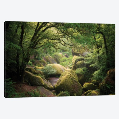 Huelgoat Forest In Brittany Canvas Print #PHM96} by Philippe Manguin Art Print