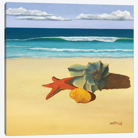 Ann's Shells Canvas Print #PHS10} by Paul Hastings Canvas Art