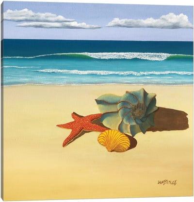 Ann's Shells Canvas Art Print