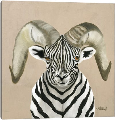 Bighorn Zheep Canvas Art Print