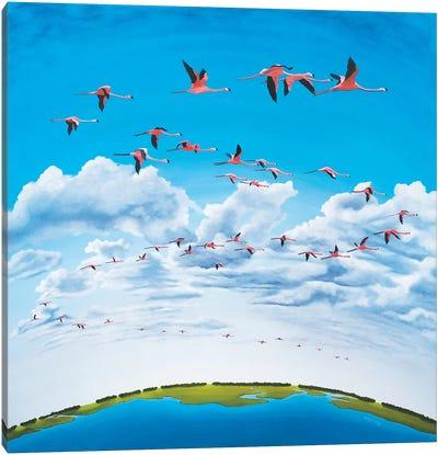 Sky High Canvas Art Print