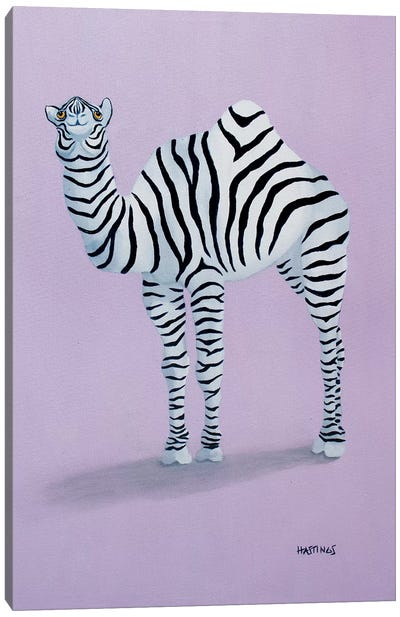 Zamel Canvas Art Print