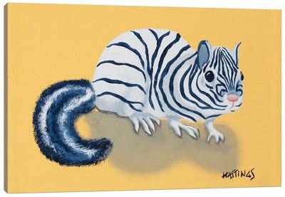 Zipmunk Canvas Art Print