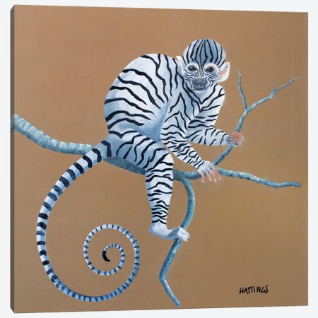 Zonkey Canvas Print #PHS62} by Paul Hastings Canvas Print
