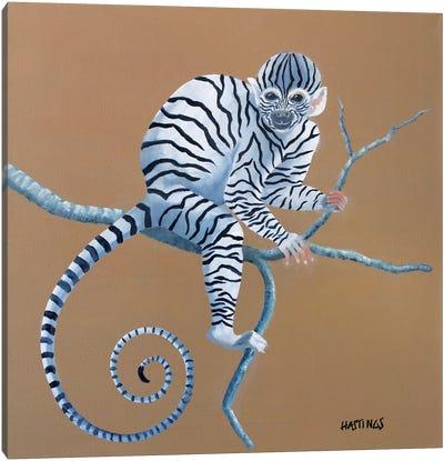 Zonkey Canvas Art Print