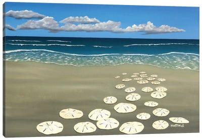 Ann's Sand Dollars Canvas Art Print