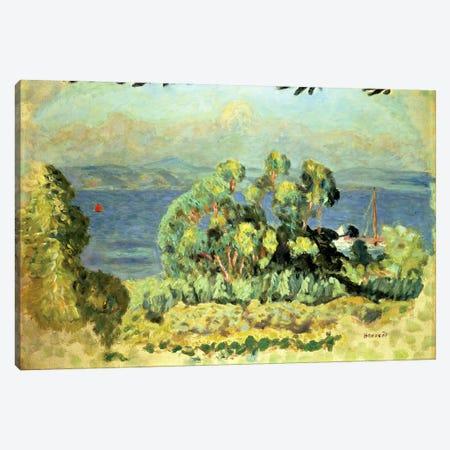 Eucalyptus Trees Canvas Print #PIB33} by Pierre Bonnard Canvas Art