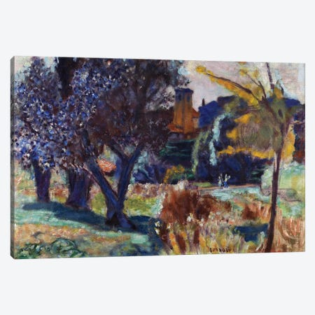 Landscape With Olive Trees And A Chapel, C.1924 Canvas Print #PIB59} by Pierre Bonnard Canvas Wall Art
