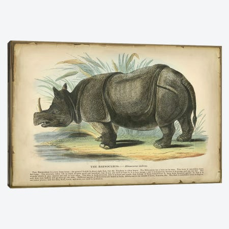Rhino Canvas Print #PIC77} by PI Collection Canvas Artwork