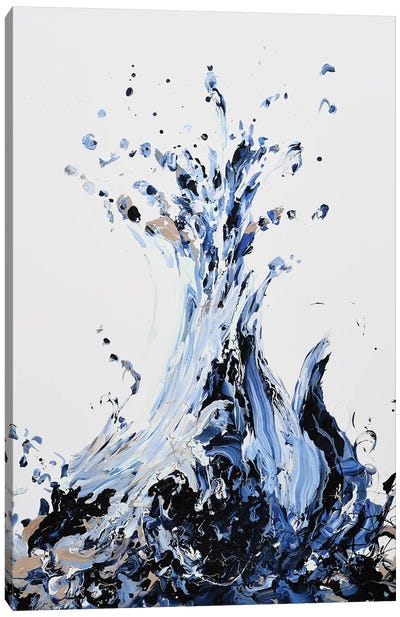 Splah Canvas Art Print