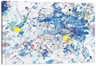 Ocean Mist Canvas Art Print