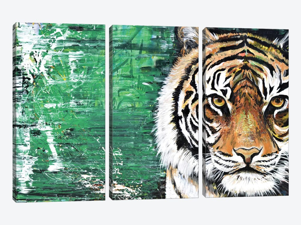 Tiger by Piero Manrique 3-piece Canvas Print