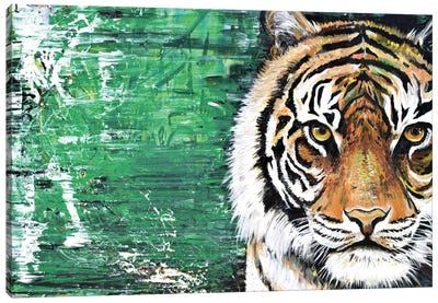 Tiger Canvas Art Print