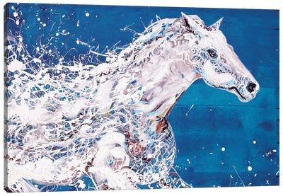 White Horse Canvas Art Print