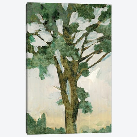 Green Tree Line I Canvas Print #PIG107} by PI Galerie Canvas Artwork