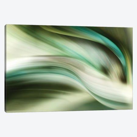Spring Air Canvas Print #PIG241} by PI Galerie Canvas Art