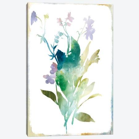Summer Botanical I Canvas Print #PIG251} by PI Galerie Canvas Art Print