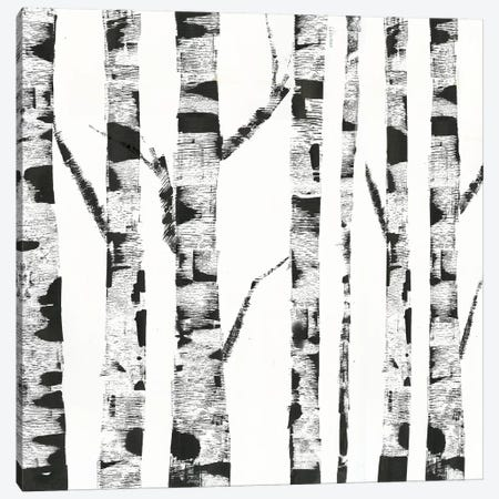 White Birch Canvas Print #PIG297} by PI Galerie Canvas Art