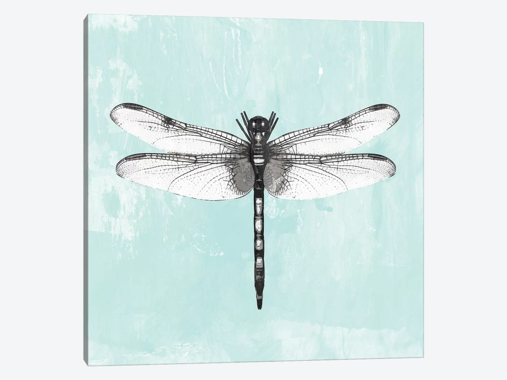Dragonfly I by PI Galerie 1-piece Canvas Art Print