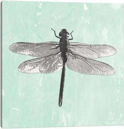 Dragonfly II Canvas Art Print