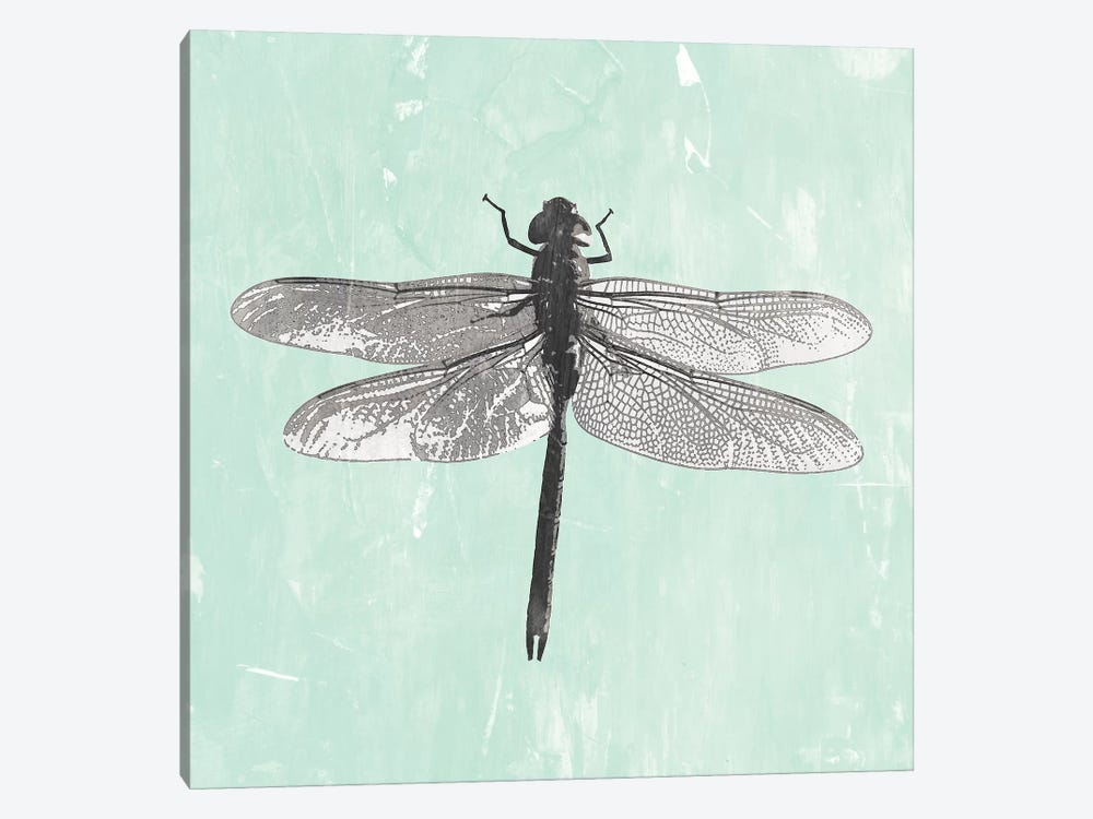 Dragonfly II by PI Galerie 1-piece Canvas Artwork