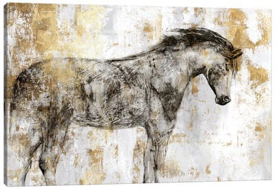 Equestrian Gold I Canvas Art Print