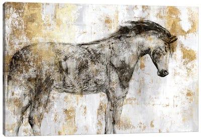 Equestrian Gold I Canvas Art Print