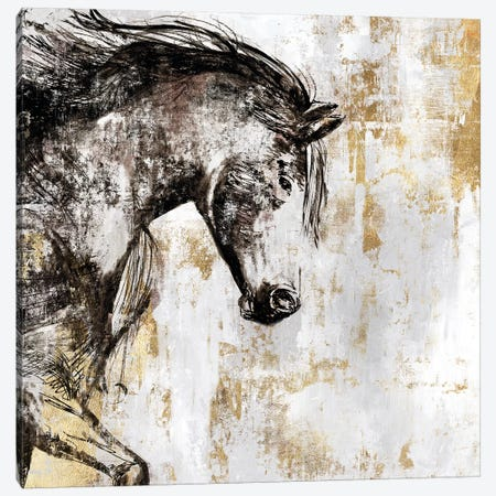 Equestrian Gold III Canvas Print #PIG66} by PI Galerie Canvas Print