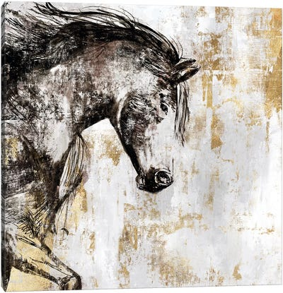 Equestrian Gold III Canvas Art Print