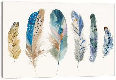Feather Weather I Canvas Art Print