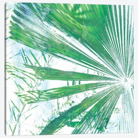 Emerald Palms I Canvas Print #PIL1} by Pam Ilosky Canvas Art Print