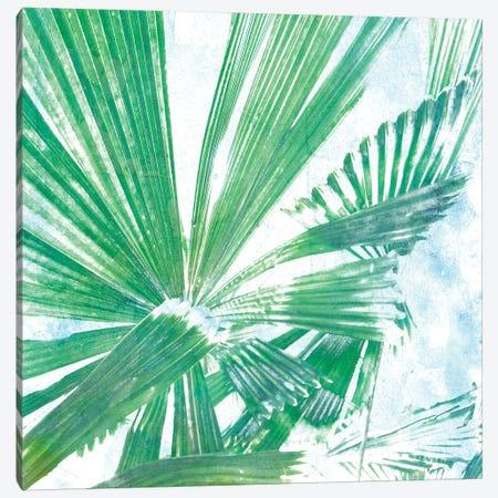 Emerald Palms II Canvas Print #PIL2} by Pam Ilosky Canvas Print