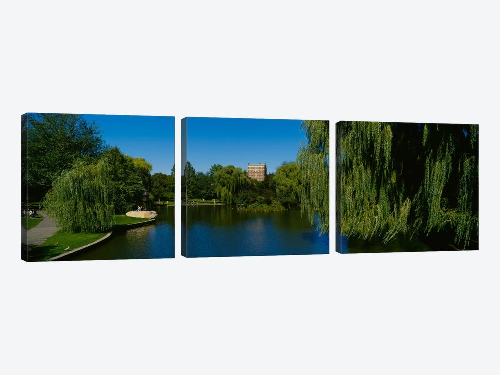Lake in a formal garden, Boston Public Garden, Boston, Massachusetts, USA by Panoramic Images 3-piece Canvas Artwork