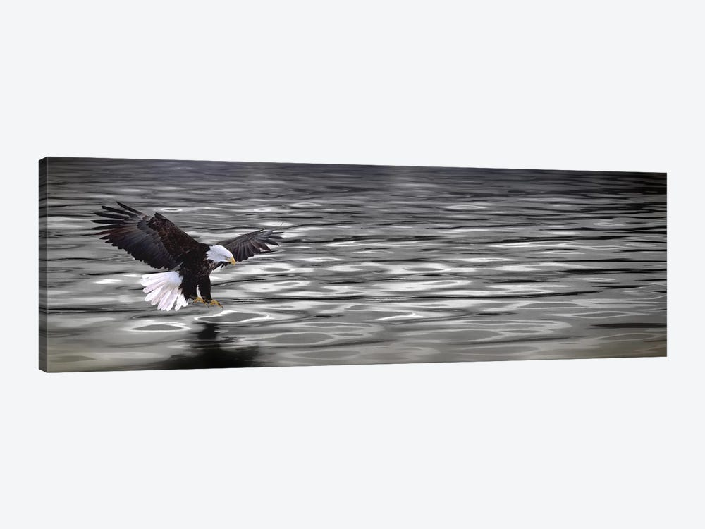 Eagle over water by Panoramic Images 1-piece Canvas Art