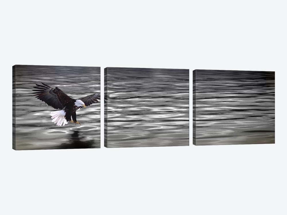 Eagle over water by Panoramic Images 3-piece Canvas Art