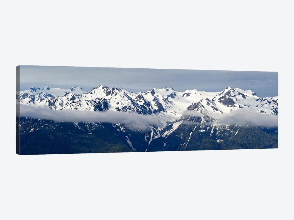 Snow covered mountains, Hurricane Ridge, Olympic National Park, Washington State, USA by Panoramic Images 1-piece Canvas Artwork