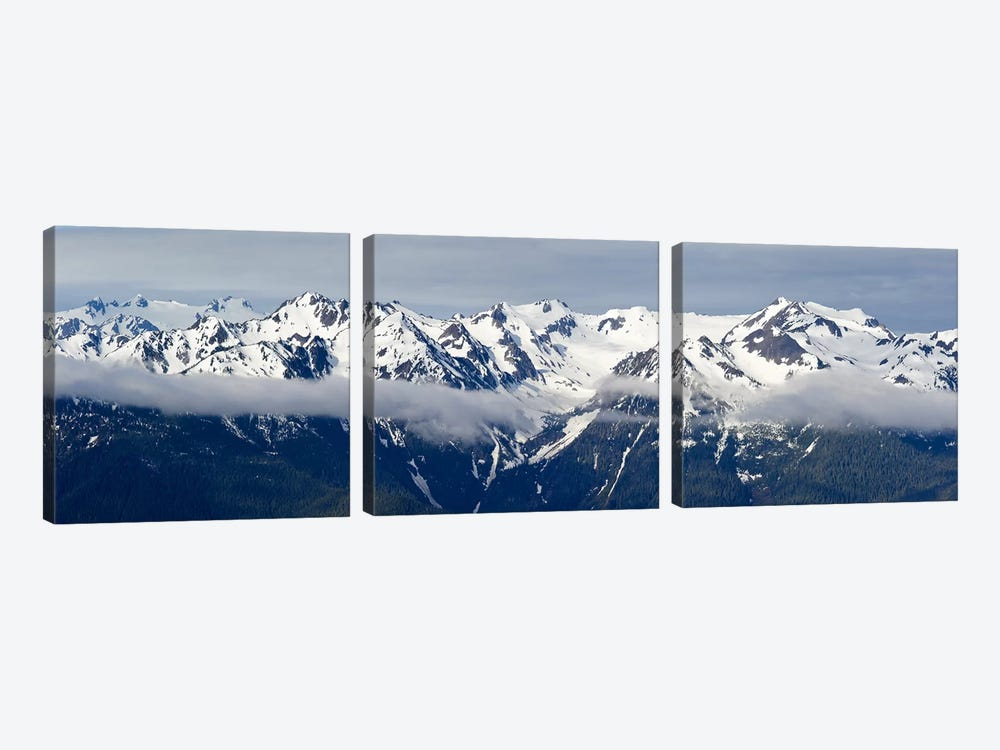 Snow covered mountains, Hurricane Ridge, Olympic National Park, Washington State, USA by Panoramic Images 3-piece Canvas Art