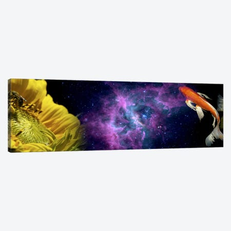 Sunflower and Koi Carp in space Canvas Print #PIM10226} by Panoramic Images Canvas Art Print