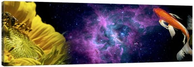 Sunflower and Koi Carp in space Canvas Art Print